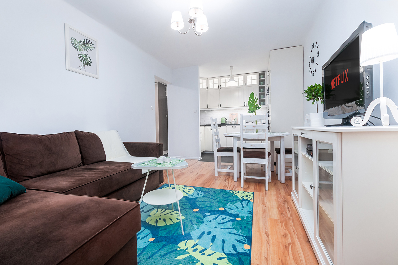 Zdjęcie wnętrza - sofa i telewizor na komodzie w salonie z widokiem na aneks kuchenny