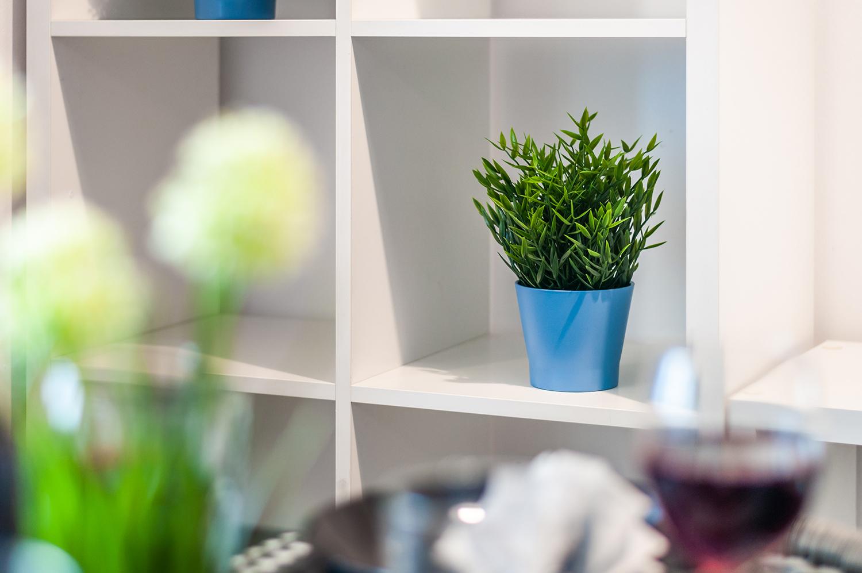 Zdjęcie wnętrza - kwiatek w niebieskiej doniczce na półce