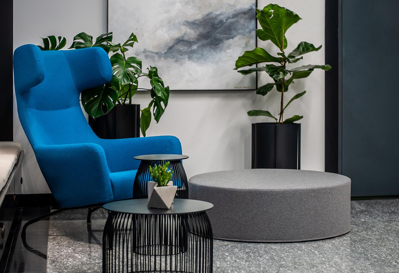 Zdjęcie wnętrza - fotel z okrągłą pufą i kwiaty w doniczkach