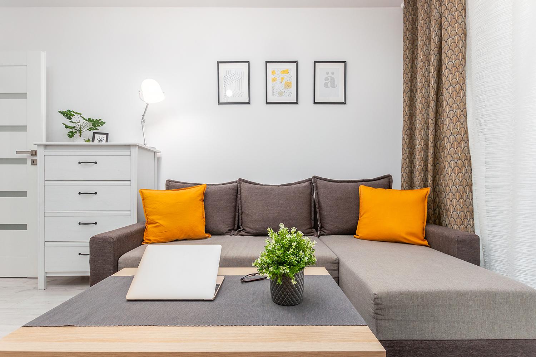 Zdjęcie wnętrza - sofa z poduszkami, stolik z laptopem i kwiatkiem oraz biała komoda