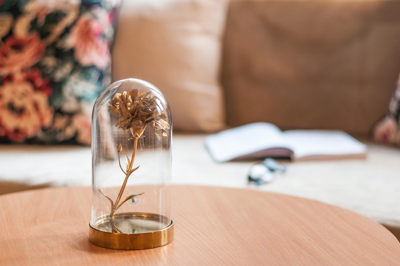 Zdjęcie wnętrza - złota róża w szklanej kopule na stoliku kawowym